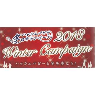 ハッシュパピー冬のキャンペーン