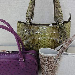 東京ドーン 爬虫類バッグコレクション