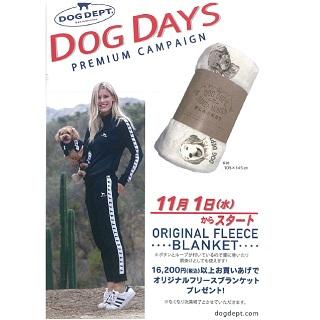 【DOG DEPT】プレミアムキャンペーンスタート