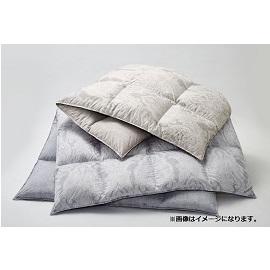 【東京西川】羽毛布団お買上げキャンペーン+AIR・ドクターセラ体験会