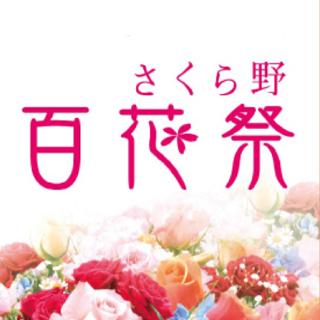 さくら野百花祭
