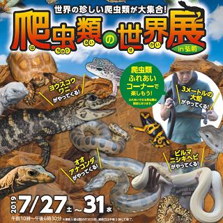 爬虫類の世界展