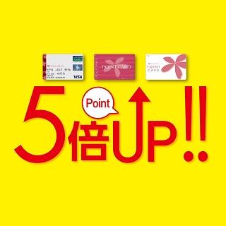 【お中元ギフトセンター】<br>7/20(金)はさくら野ポイント5倍
