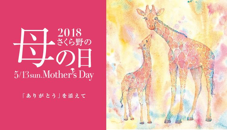 2018母の日